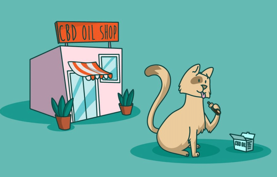 CBD Oil Dosage For Cats