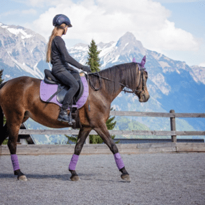 how to ride a horse for beginners